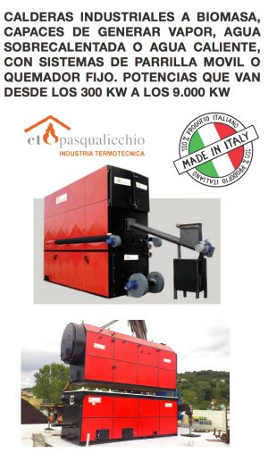 I) Calderas Industriales a Biomasa